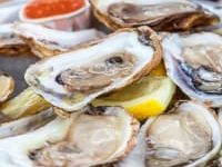 raw oysters in shells