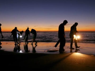 people with flashlights walking along beach at twilight