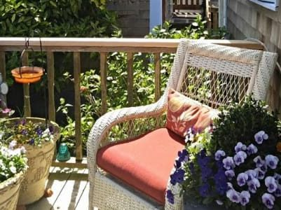 chair surrounded by flowers in pots