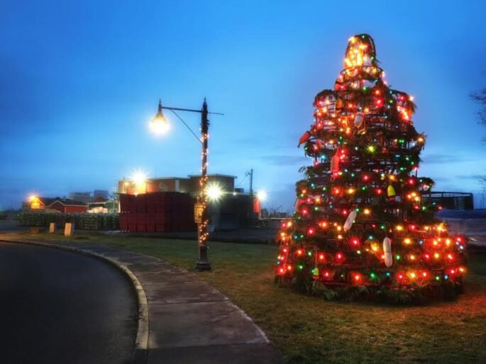 outdoor Christmas tree at twilight lit with many colored lights